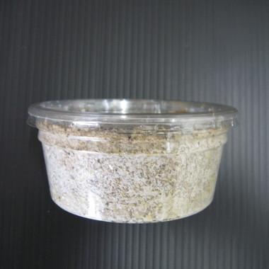 オオヒラタケ菌糸カップ 200cc 微粒子タイプ